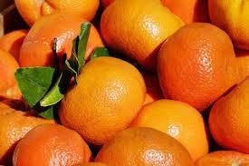 Nu mai cumparati mandarine de la magazin si incepeti sa va cresteti intr-un ghiveci de flori sute de mandarine organice!